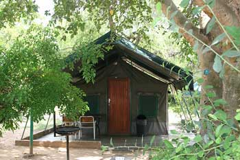 3 day budget kruger safari tent in bush