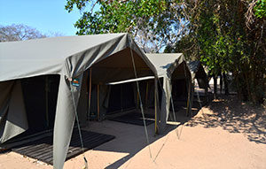camping kruger safari in pretoriuskop
