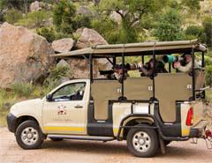 kzn-park-safari