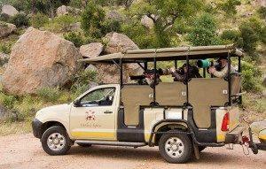 classic kruger safari vehicle