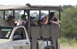 guests on the lookout on a kruger safari