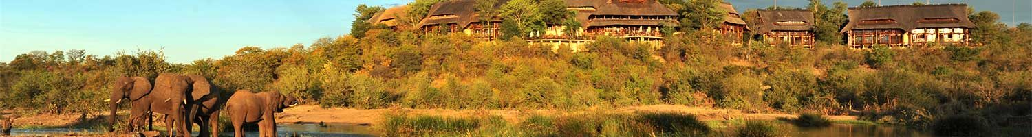 6 day victoria falls and kruger safari elephants with a view elephants with a view on a victoria falls and kruger safari
