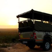 kruger safari open safari vehicle