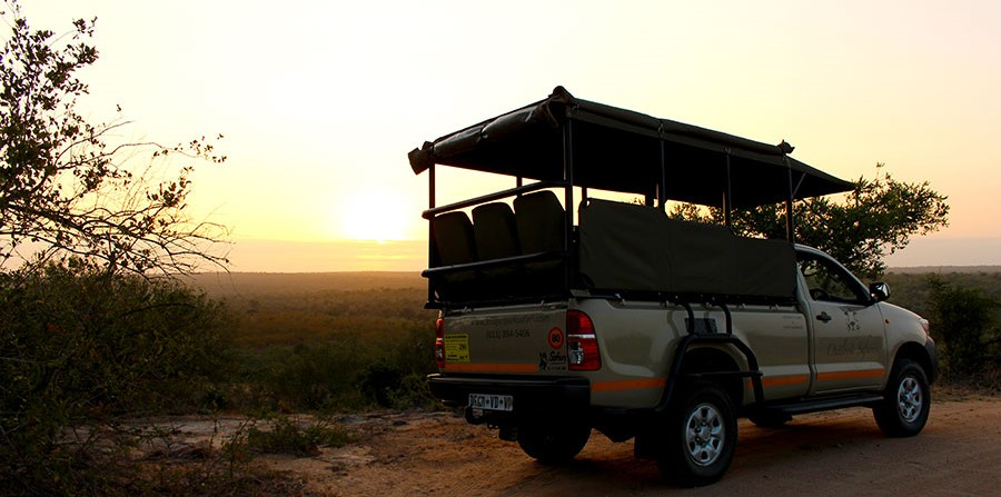 kruger safari open safari vehicle