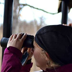 kruger-safari-guest-on-the-look-out