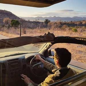kruger-safari-outlook-guide-game-drive