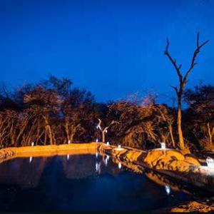 kruger-safari-private-game-lodge-swimming-pool