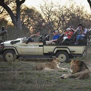 kruger-safari-private-kapama-buffalo-camp