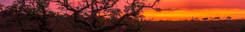 kruger-camping-safari-colorful-sunset