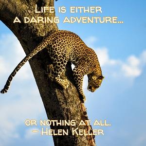 leopard helen keller quote