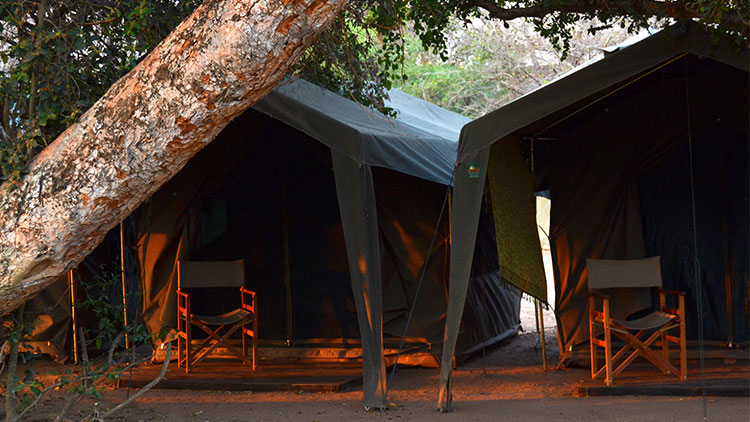 4-day-camping-kruger-safari-accommodaion-campsite