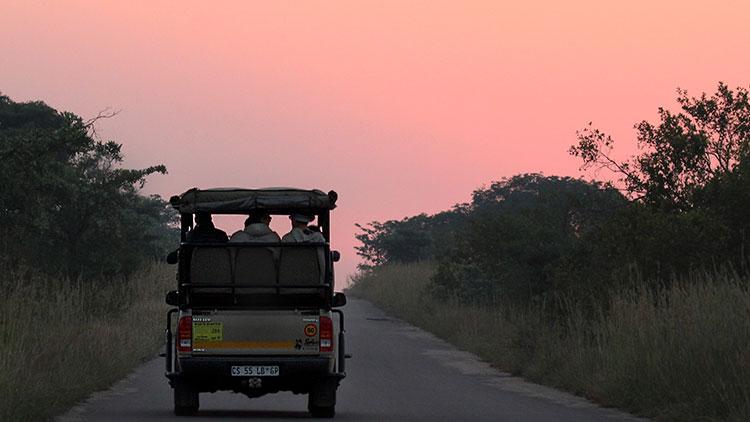 5-day-classic-kruger-safari-vehicle-sunrise-game-drive