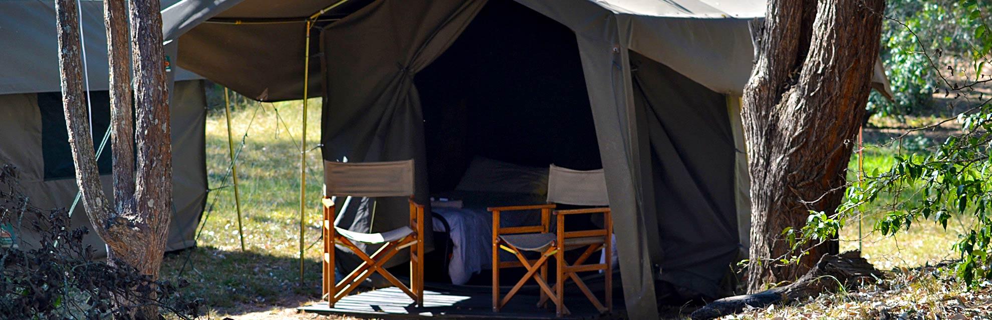 kruger wildlife safaris camping safari